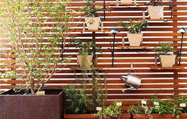 Para escolher onde a horta será montada, é preciso avaliar o espaço e a luminosidade disponíveis (Reprodução/Internet/cantinhodabbel.com.br)