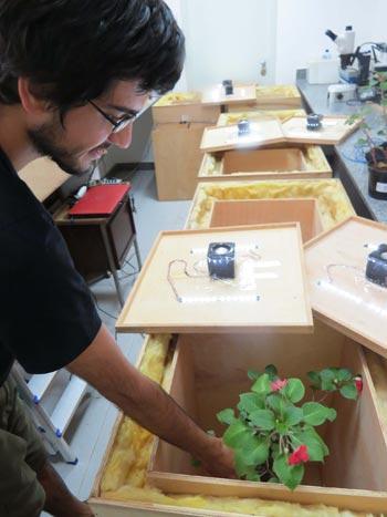 Andre Valle/ Programa de Pos-Graducao em Ecologia da UFV