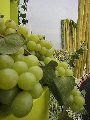 O espaço de transição começa a ficar mais iluminado, com uvas e heras que remetem a alegria e fertilidade (Raul Cânovas Paisagismo/Divulgação)