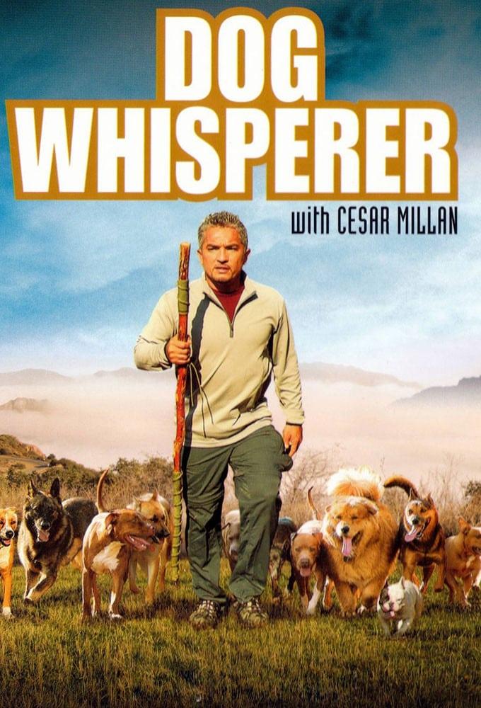 César, l'homme qui parle aux chiens - série (2004) - SensCritique