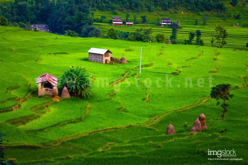 Nuwakot - Imgstock, Biratnagar