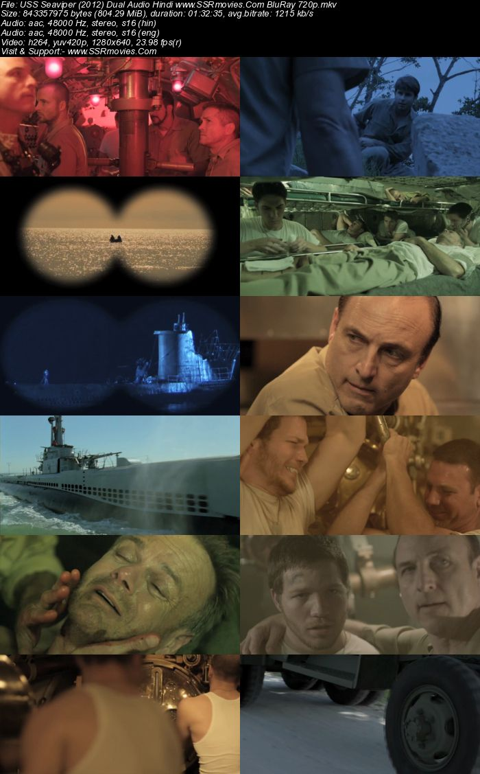USS Seaviper (2012) Dual Audio Hindi 480p BluRay x264 300MB Movie Download