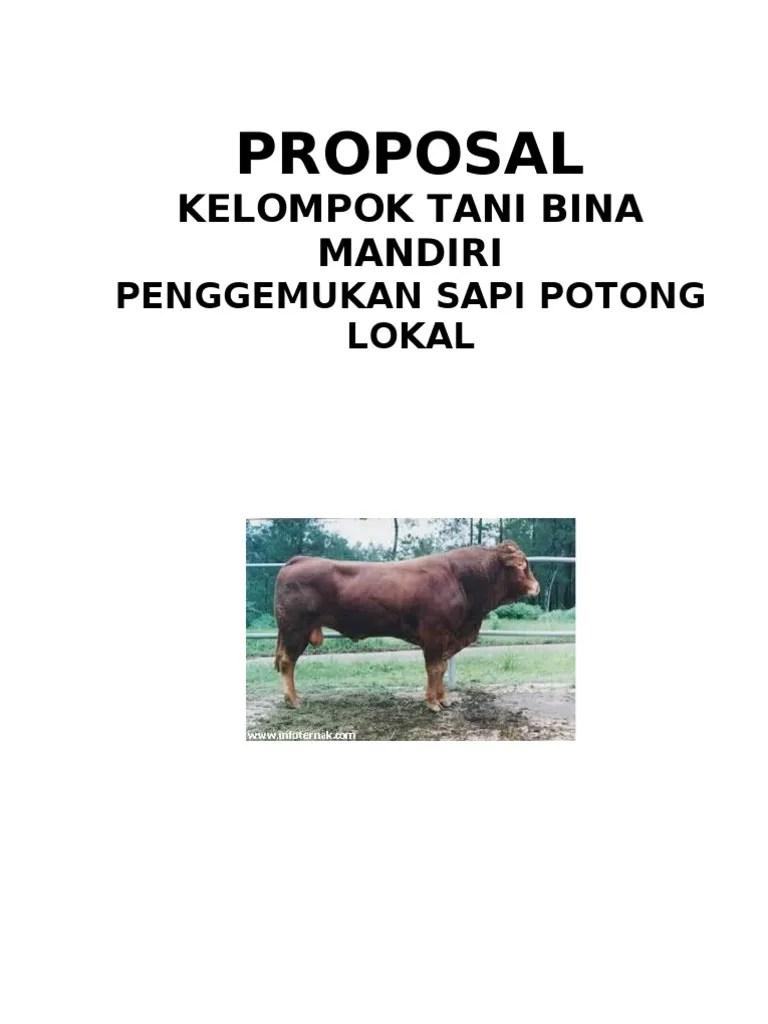 Contoh Proposal Ternak Sapi : contoh, proposal, ternak, Contoh, Proposal, Kelompok