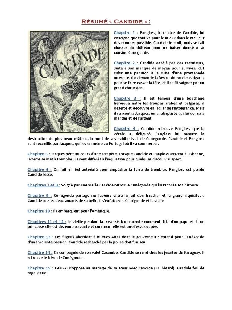Les Caractères Résumé Par Chapitre : caractères, résumé, chapitre, Résumé, Candide, Description, Persos, Morale