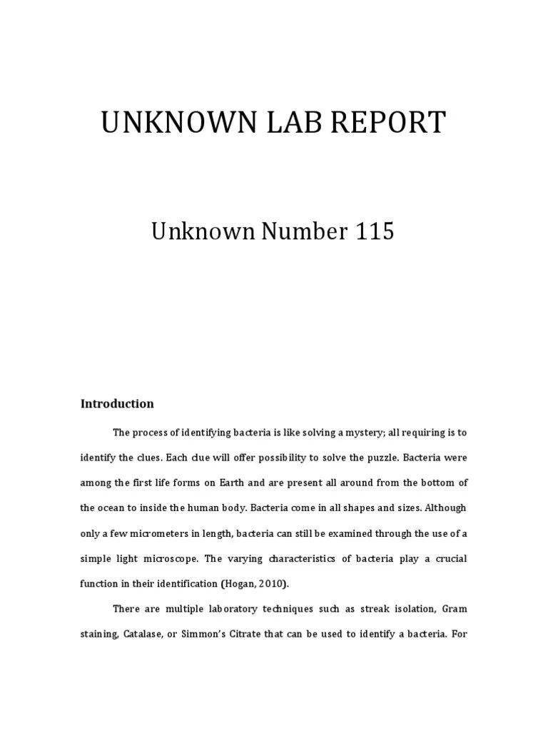 Unknown Lab Report Growth Medium Bacteria