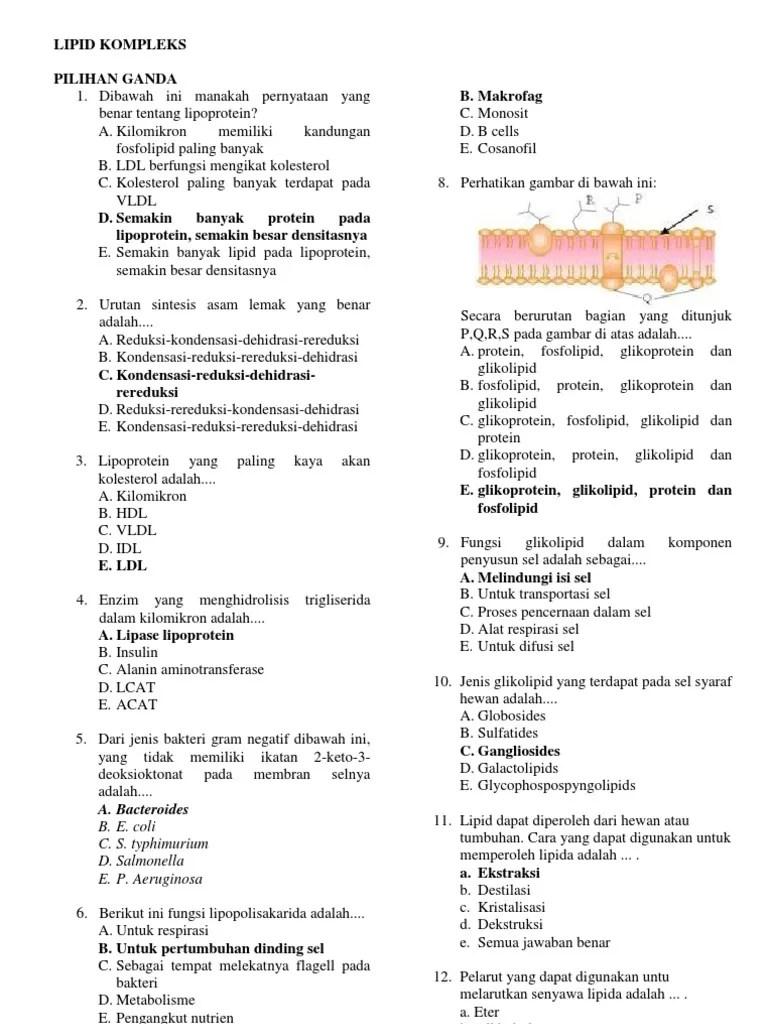 Soal Karbohidrat Dan Jawabannya : karbohidrat, jawabannya, SOAL-SOAL, BIOKIMIA