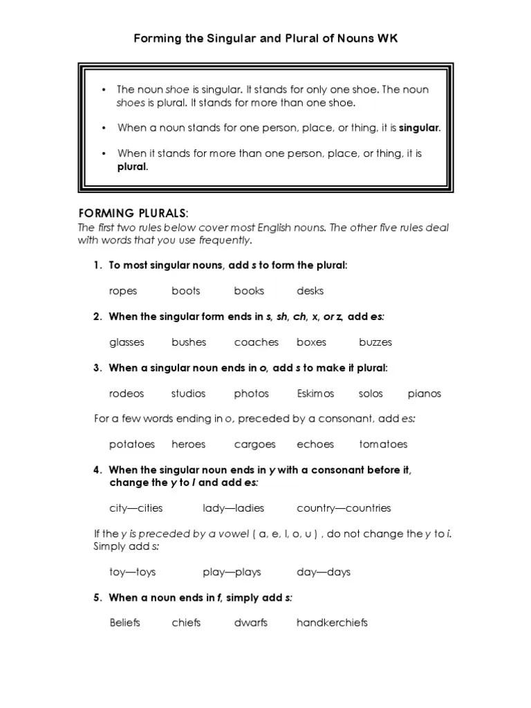 medium resolution of Singular \u0026 Plural Nouns: Notes