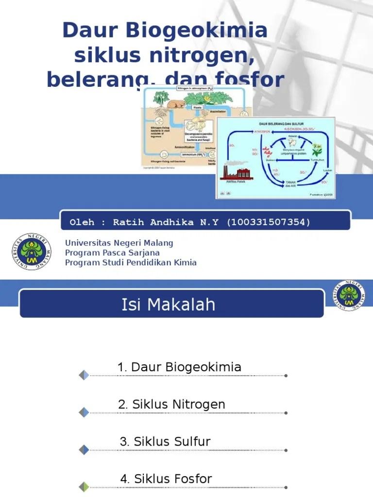 Daur Biogeokimia Nitrogen : biogeokimia, nitrogen, Biogeokimia