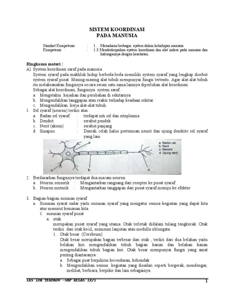soal dan jawaban sistem koordinasi dan alat indera kelas 9