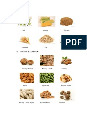 Makanan Dari Serealia : makanan, serealia, Contoh, Makanan, Serealia, Barisan