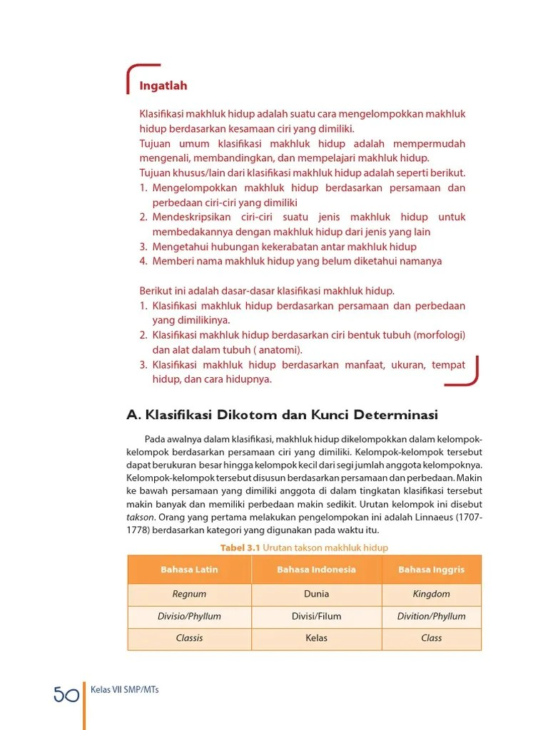 Persamaan Dan Perbedaan Tumbuhan Lumut Dan Paku : persamaan, perbedaan, tumbuhan, lumut, Perbedaan, Persamaan, Tumbuhan, Lumut, Berbiji, Terkait