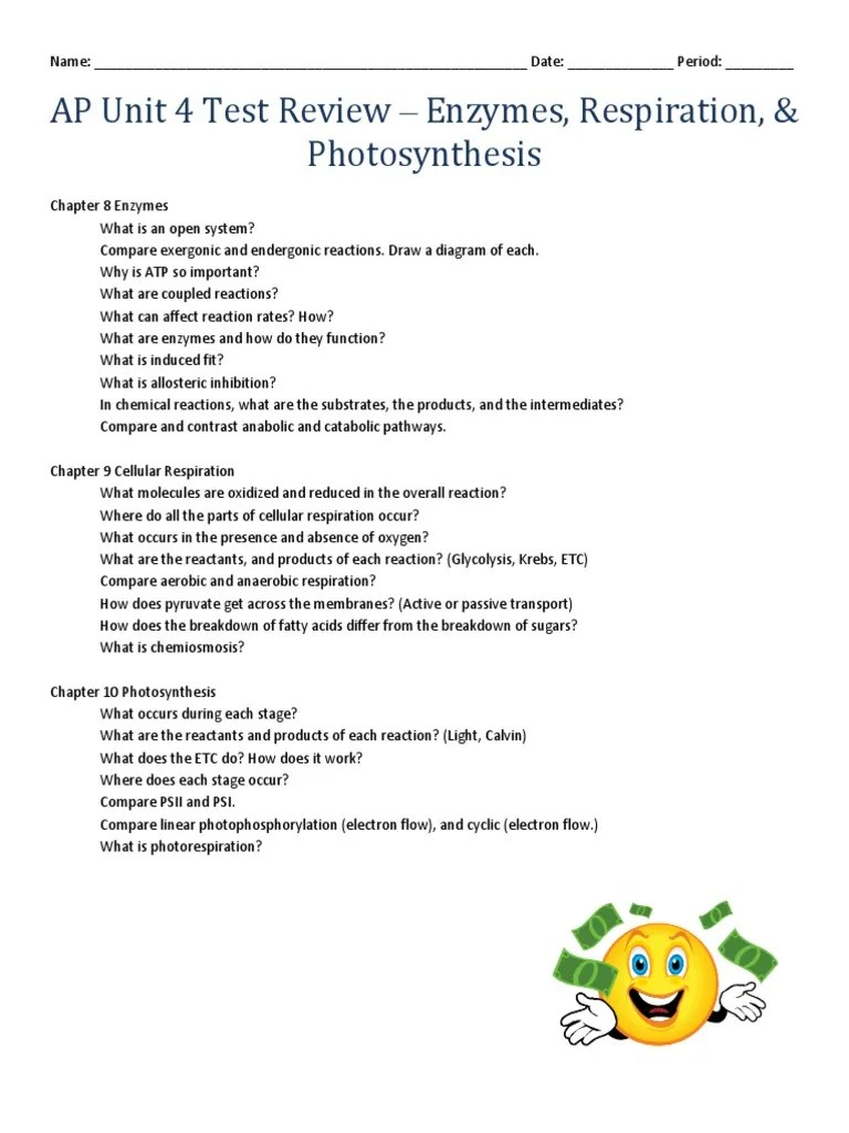 copy of copy of ap unit3 testreview enzymes 2crepiration 2cphotosynthesis cellular respiration metabolic pathway [ 768 x 1024 Pixel ]