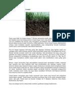 Download Nonosoft Khot : download, nonosoft, Download, Nonosoft, V2.pdf