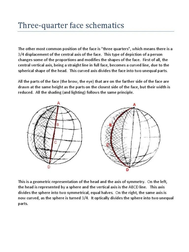 small resolution of three quater face schematics pdf cartesian coordinate system human nose