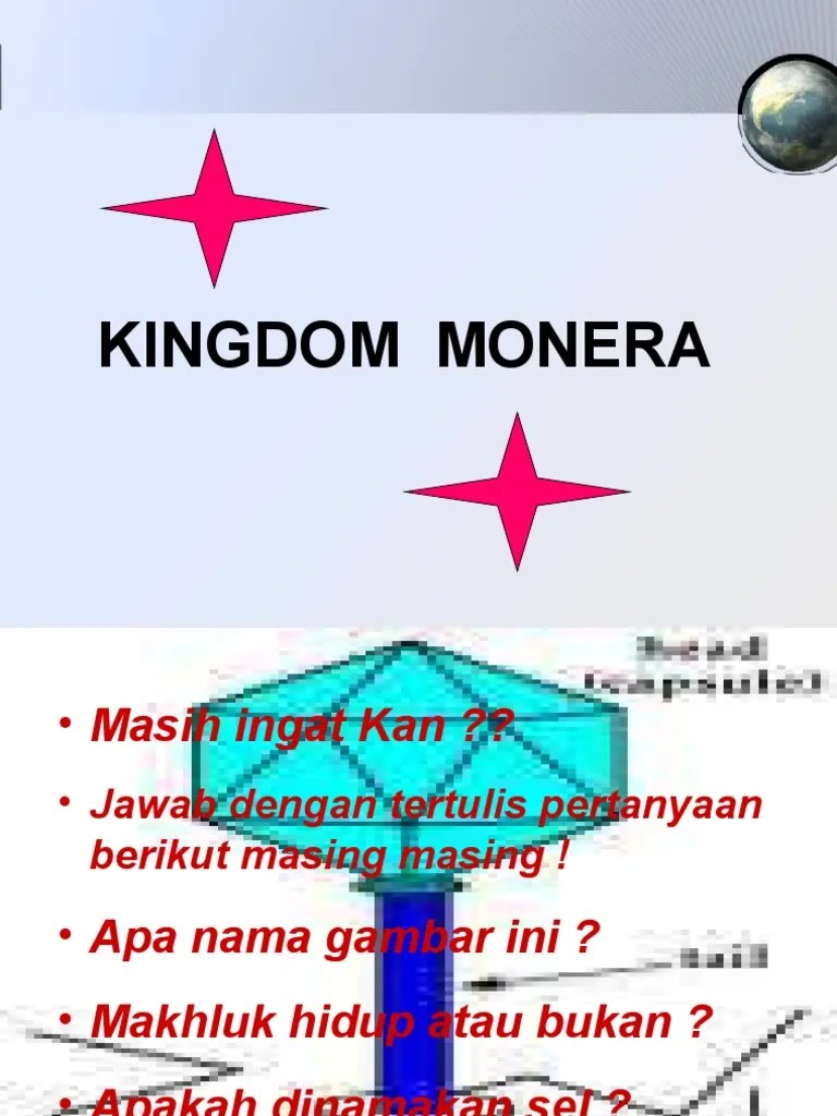Klasifikasi Kingdom Monera : klasifikasi, kingdom, monera, Kingdom, Monera