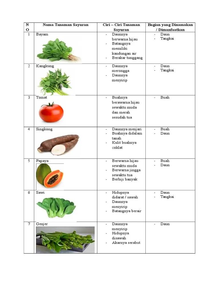 Contoh Tanaman Sayuran Daun : contoh, tanaman, sayuran, Kliping, Tanaman, Sayuran