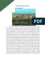 Gambar Ekosistem Padang Rumput : gambar, ekosistem, padang, rumput, Makalah, Padang, Rumput