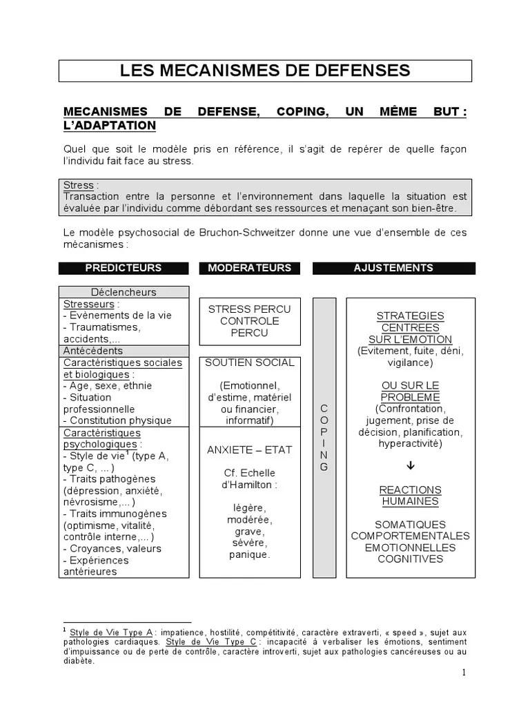 Les 7 Niveaux De Mecanismes De Defense : niveaux, mecanismes, defense, Mécanismes, Défense, (Selon, Perry), Conscience