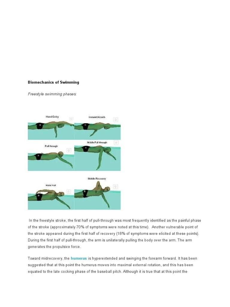 freestyle stroke diagram [ 768 x 1024 Pixel ]