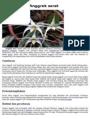 Gambar Serat Batang Anggrek : gambar, serat, batang, anggrek, Paling, Populer, Gambar, Anggrek, Serat, Bunga, Indah