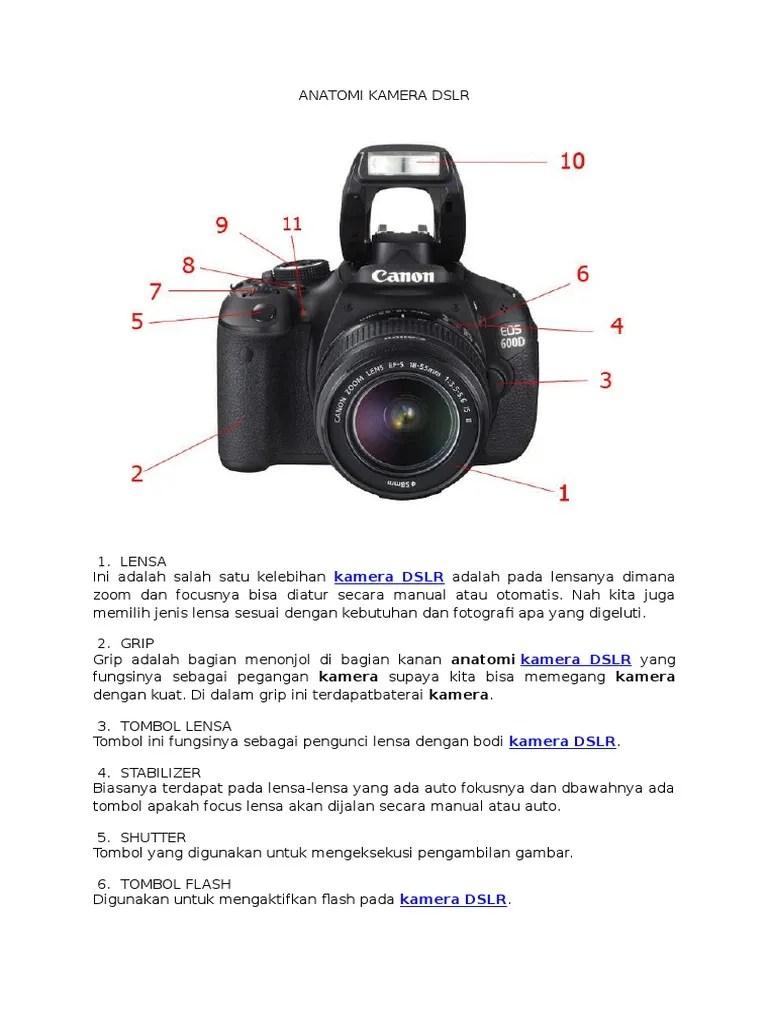 Bagian Kamera Dslr Dan Fungsinya : bagian, kamera, fungsinya, Anatomi, Kamera