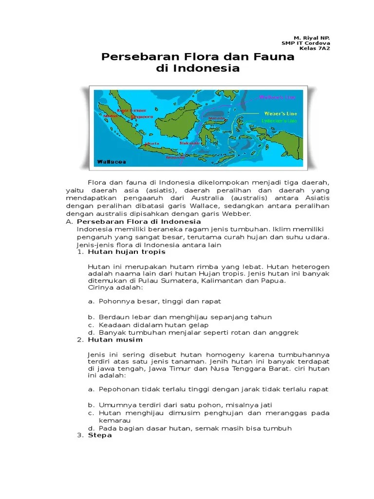 Persebaran Hutan Musim Di Indonesia : persebaran, hutan, musim, indonesia, Jelaskan, Hutan, Terdapat, Indonesia, Bersama