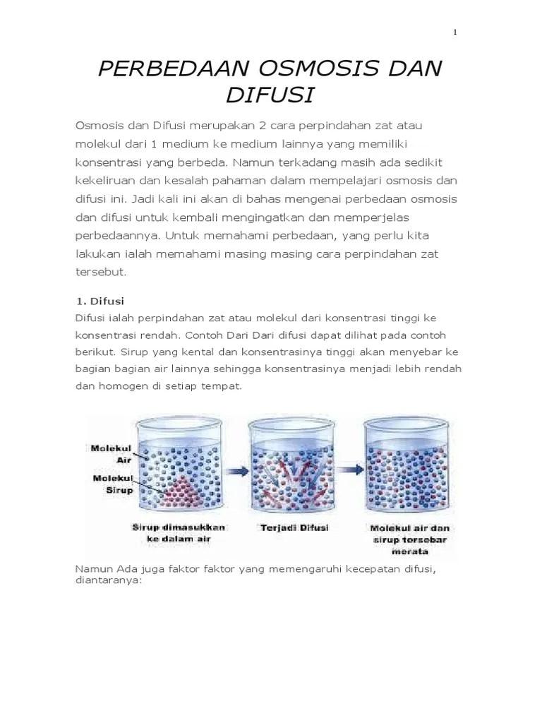 Osmosis Dan Difusi : osmosis, difusi, Perbedaan, Osmosis, Difusi