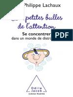 Les Petites Bulles De L'attention Pdf : petites, bulles, l'attention, Henri, Filippini, Édition
