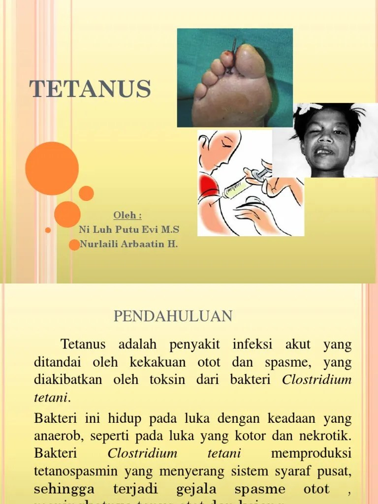 Kelainan Otot Yang Disebabkan Oleh Adanya Infeksi Bakteri Clostridium Tetani Dinamakan : kelainan, disebabkan, adanya, infeksi, bakteri, clostridium, tetani, dinamakan, Kelainan, Disebabkan, Adanya, Infeksi, Bakteri, Clostridium, Tetani, Disebut, Sebutkan