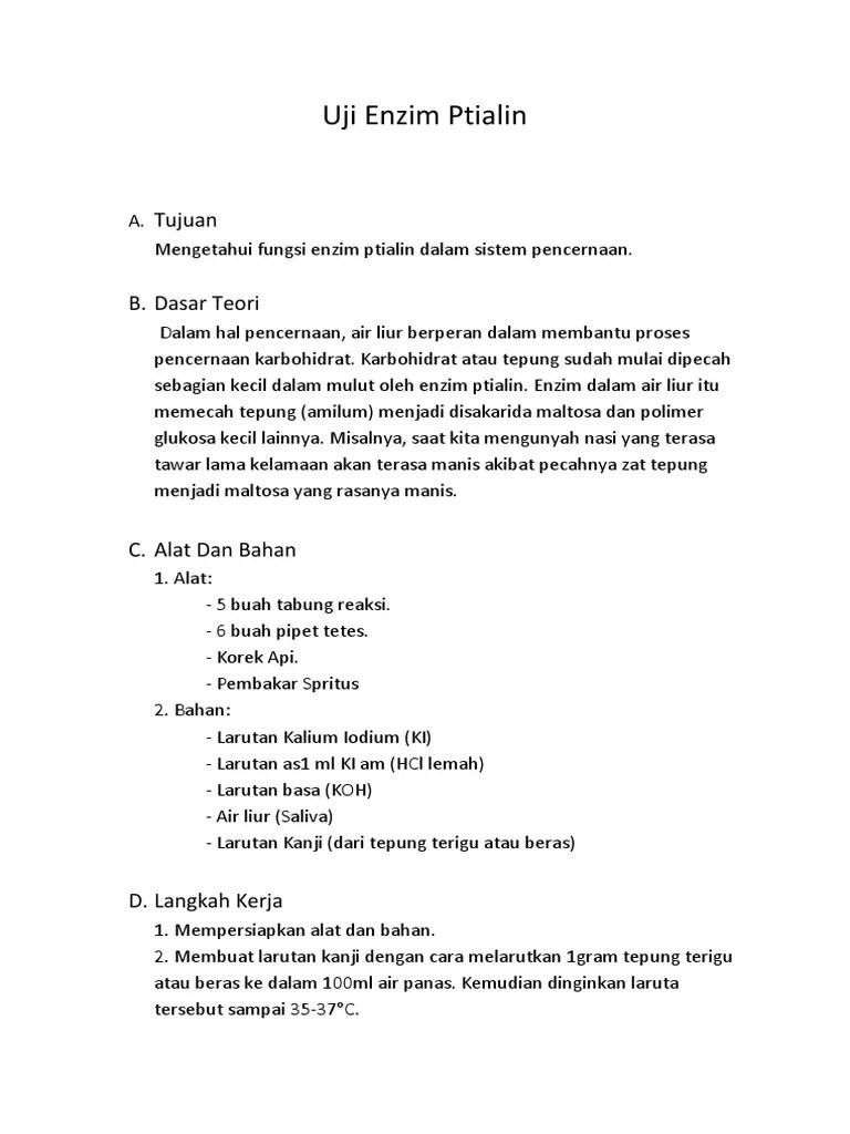 Fungsi Ptialin : fungsi, ptialin, Enzim, Ptialin