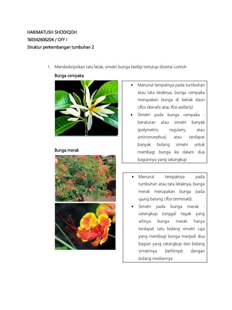 Gambar Bunga Dan Bagiannya : gambar, bunga, bagiannya, Gambar, Tugas, Individu, Bunga, Bagiannya, Rebanas