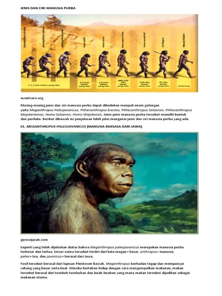 Jenis Jenis Manusia Purba Dan Penjelasannya : jenis, manusia, purba, penjelasannya, Jenis, Manusia, Purba, Meganthropus, Paleojavanicus