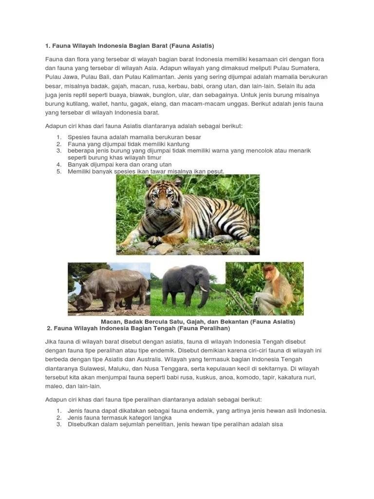 Ciri Ciri Fauna Indonesia Bagian Barat : fauna, indonesia, bagian, barat, Fauna, Bagian, Barat.docx