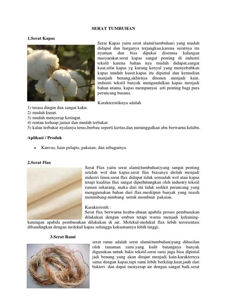 Serat Hewan Dan Tumbuhan : serat, hewan, tumbuhan, Gambar, Serat, Tumbuhan, Domba