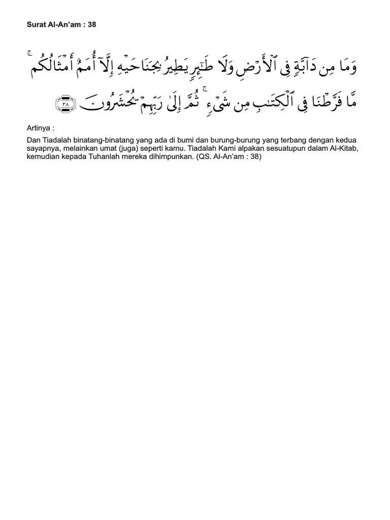Qs Al An Am : Surat
