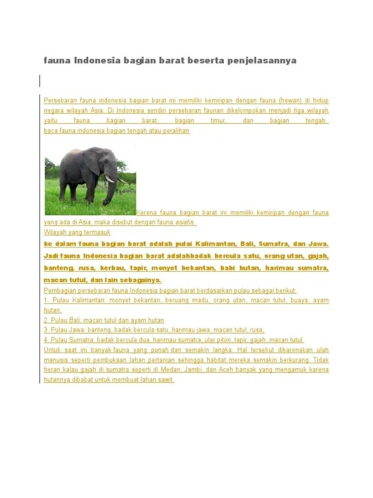 Fauna Bagian Barat Dan Penjelasannya : fauna, bagian, barat, penjelasannya, Fauna, Indonesia, Bagian, Barat, Beserta, Penjelasannya