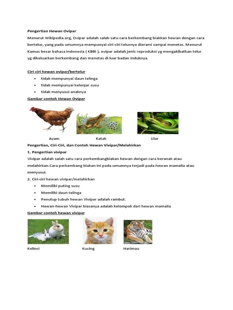 Hewan Vivipar : hewan, vivipar, Pengertian, Hewan, Ovipar