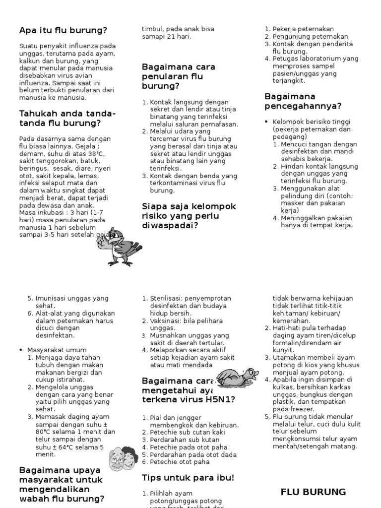 Avian Influenza Leaflet Lilis