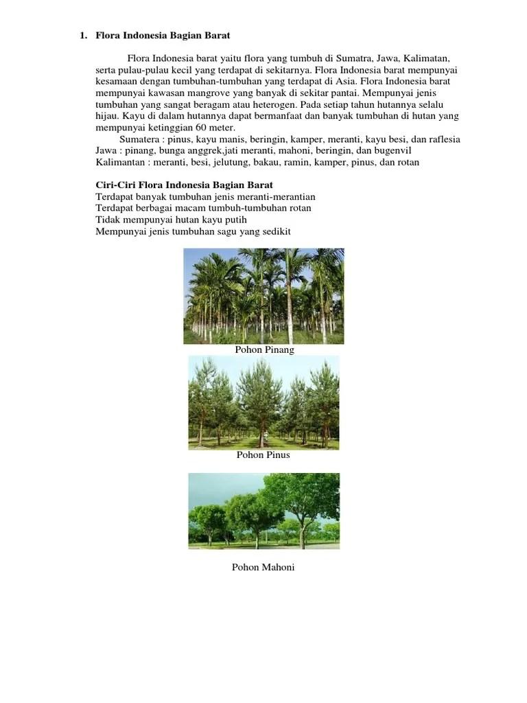 Ciri Ciri Fauna Indonesia Bagian Barat : fauna, indonesia, bagian, barat, Flora, Fauna, Indonesia