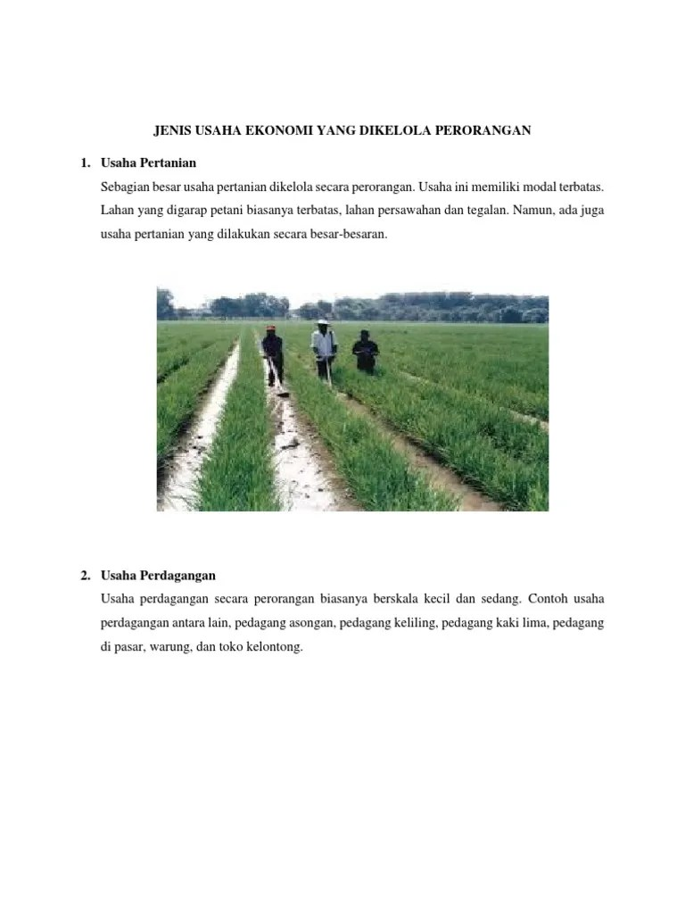 Gambar Usaha Ekonomi : gambar, usaha, ekonomi, Contoh, Gambar, Jenis, Usaha, Pertanian