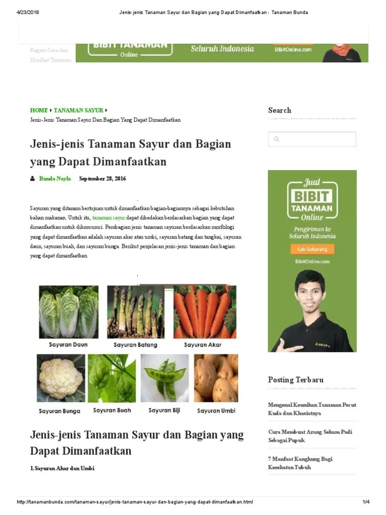 Contoh Sayuran Akar : contoh, sayuran, Tanaman, Sayuran, Diambil, Manfaatnya, Bagian, Adalah, Sekolah