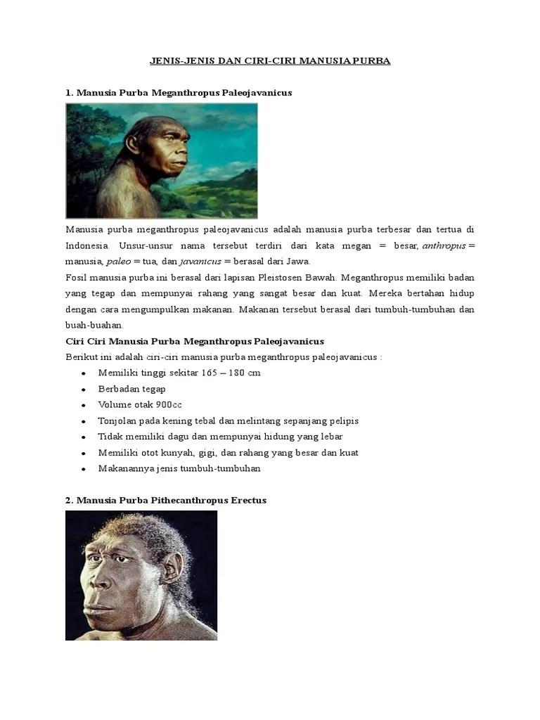 Ciri-ciri Pithecanthropus Erectus : ciri-ciri, pithecanthropus, erectus, Sebutkan, Manusia, Purba, Pithecanthropus, Erectus