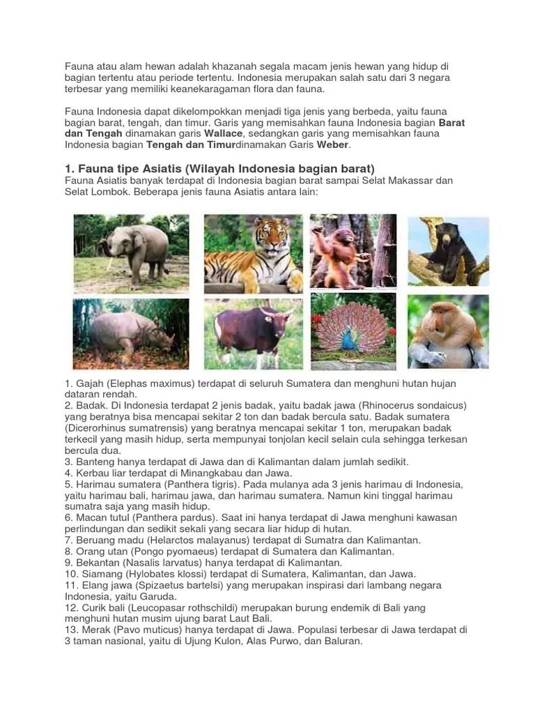 Gambar Fauna Indonesia Bagian Barat Beserta Penjelasannya