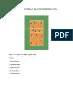 Posisi Pemain Voli Dan Tugasnya : posisi, pemain, tugasnya, Posisi, Pemain