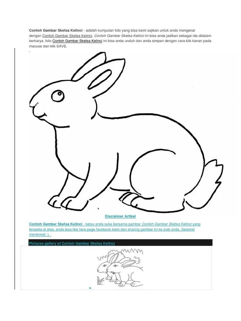 Contoh Gambar Kelinci : contoh, gambar, kelinci, Contoh, Gambar, Sketsa, Kelinci