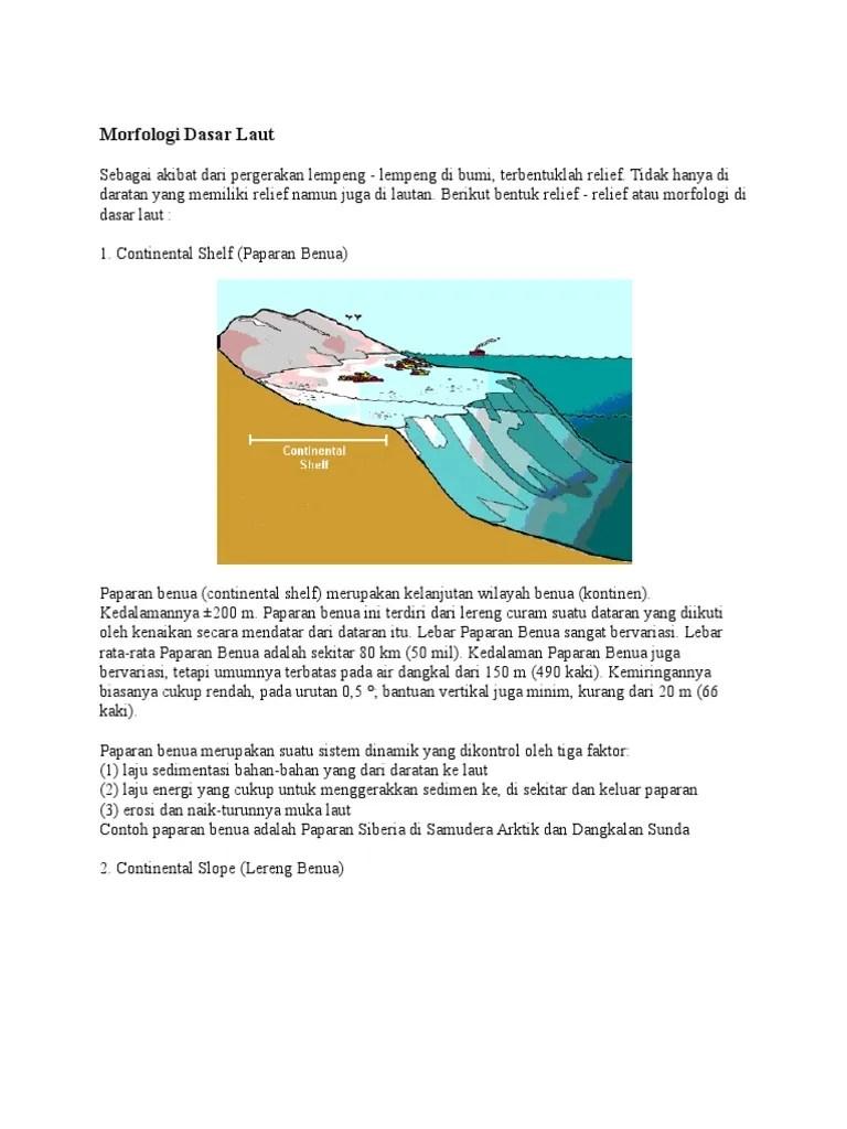 Relief Lautan : relief, lautan, Morfologi, Dasar