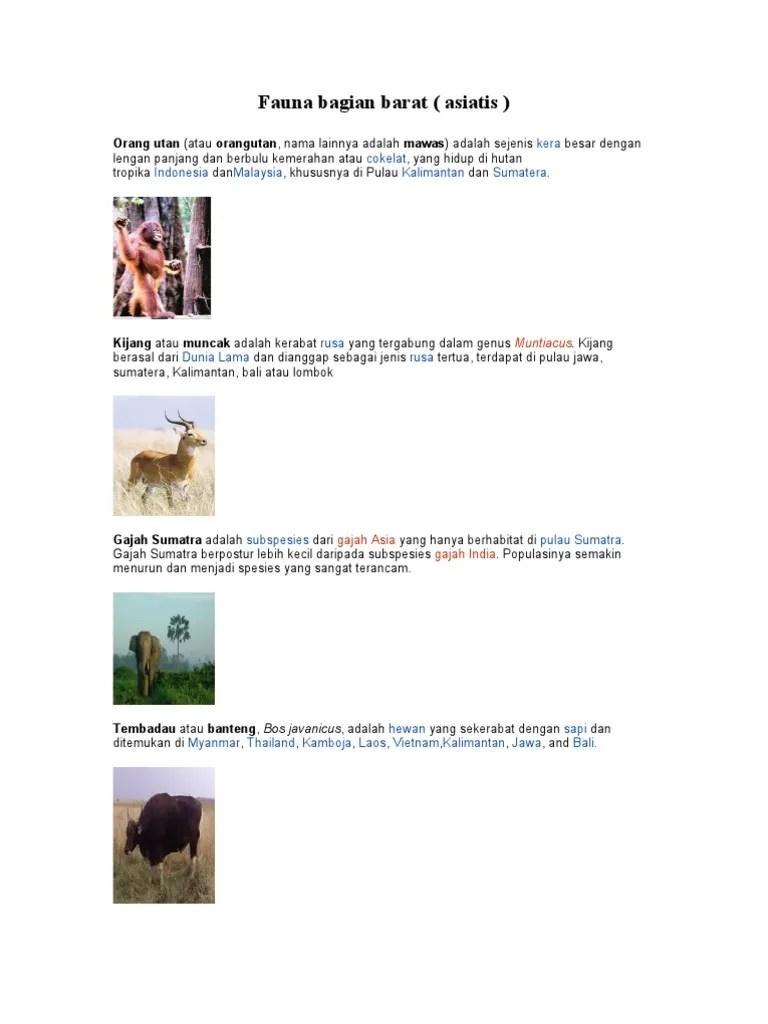 Fauna Bagian Barat Dan Penjelasannya : fauna, bagian, barat, penjelasannya, Gambar, Fauna, Bagian, Barat, Indonesia, Beserta, Penjelasannya, Rebanas