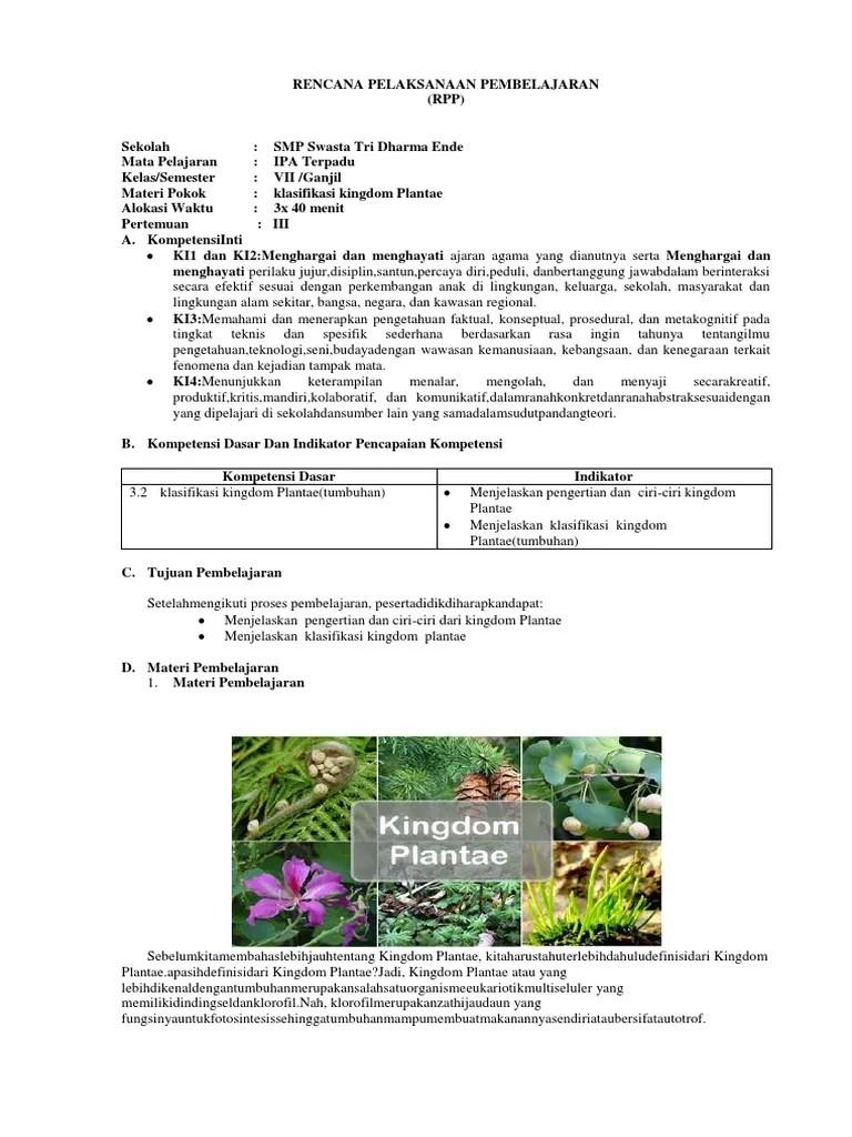 Klasifikasi Plantae : klasifikasi, plantae, Plantae(Tumbuhan)