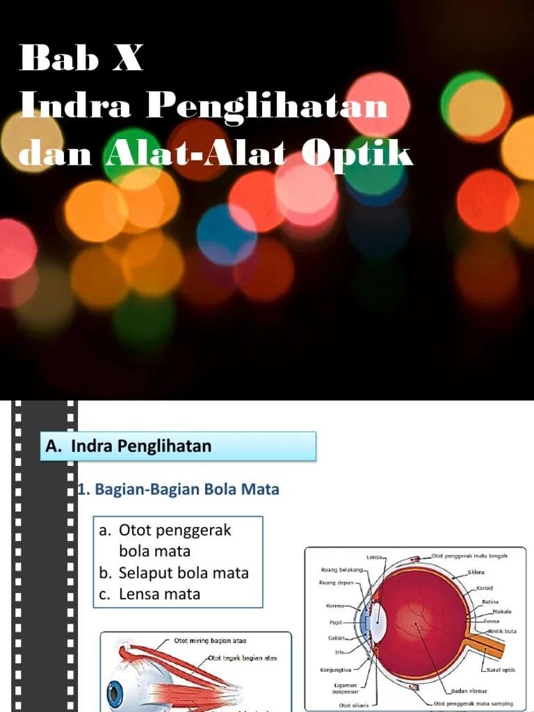 (DOC) Rpp penglihatan dan alat optik | Vhiioo Jnr