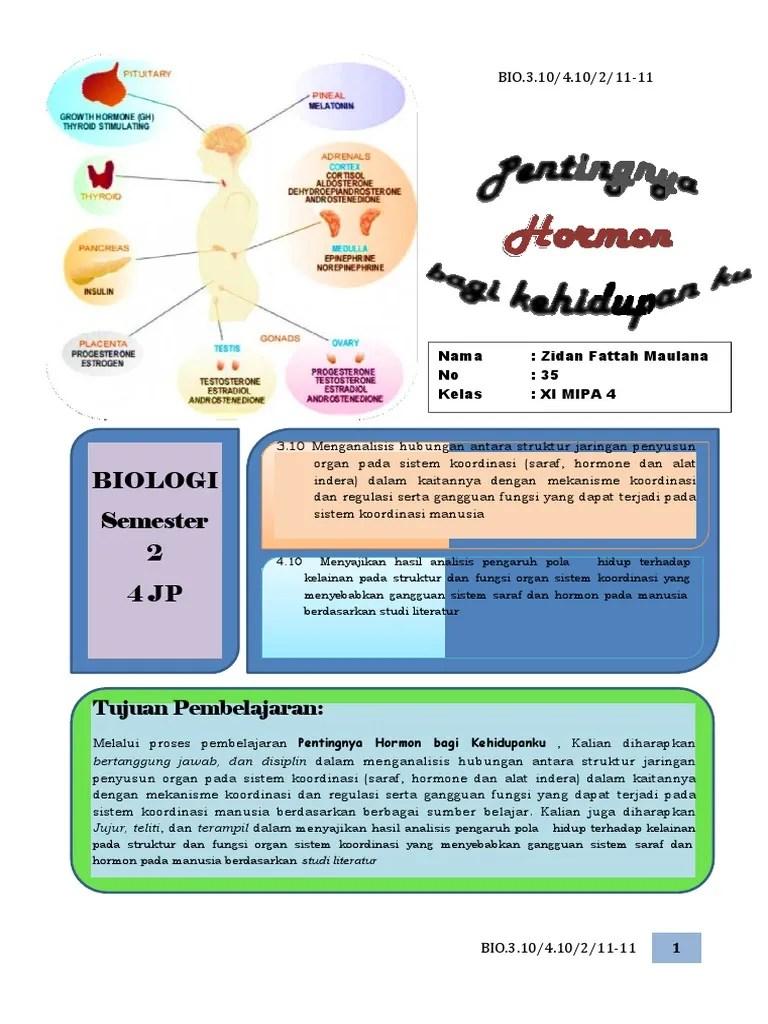 Sistem Hormon Manusia : sistem, hormon, manusia, Sistem, Hormon